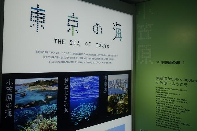 葛西臨海水族園東京の海