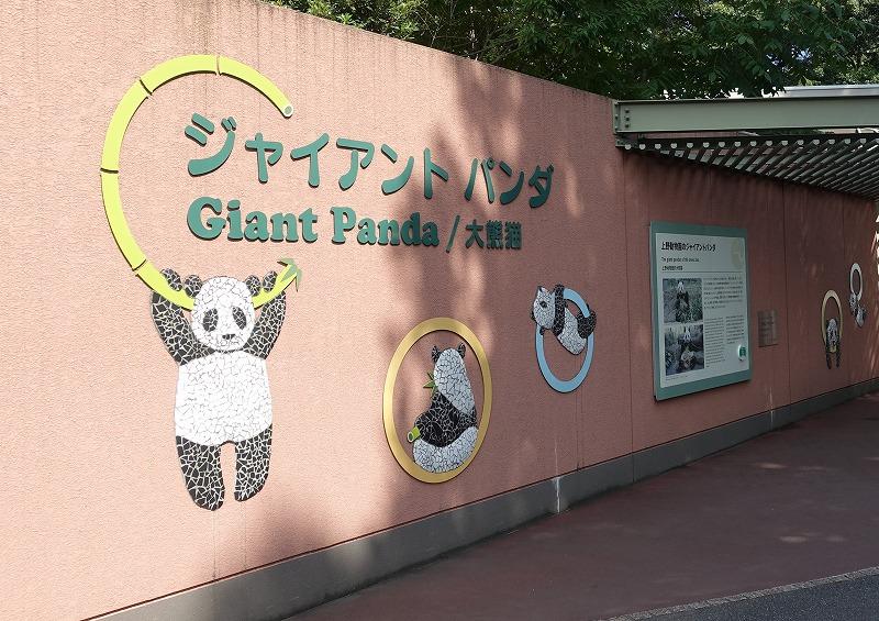 上野動物園パンダ舎
